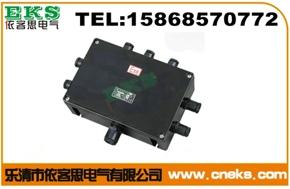 BJX8050-G1防爆防腐接线箱 订做防爆防腐接线箱价格