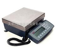 工业大量程天平,30kg高精度电子天平,SP30001西特天平