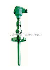 WRPC-430 吹气热电偶