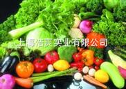 存放反季节蔬菜保鲜水果冷库建造