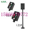 BZC8050-A2D2K1L BZC8050-A4D4LBZC8050-A2D2K1L BZC8050-A4D4L 立式防爆防腐操作箱