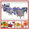 QH-150~600凝胶软糖生产线