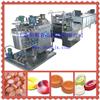 QH150硬糖生产线